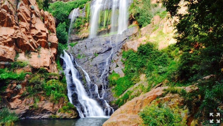 Waterfall Scenics Rock - Object Nature Motion Beauty In Nature No People Tranquil Scene Day Forest Outdoors Power In Nature Tree Water