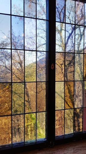 Window Tree Day Indoors  No People Nature Outdoors History Reflection Red Light Multi Colored Colors Colorful Colour Of Life