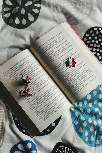 Reading moments❤ Textile Indoors  High Angle View Paper No People Crumpled Paper Close-up Day Book Libro Ratón Juguete Love New Nuevo  ❤ Irish Irlandés Cama Páginas