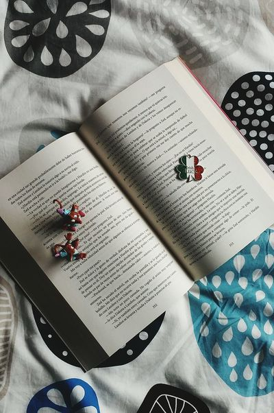 Reading moments❤ Textile Indoors  High Angle View Paper No People Crumpled Paper Close-up Day Book Libro Ratón Juguete Love New Nuevo  ❤ Irish Irlandés Cama Páginas