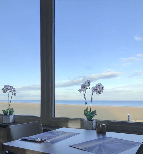 Flower vase on table by sea against sky