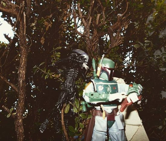 Never stop to text while you're on the hunt! Happy LV4/26 to all you Aliens fans out there! Hasbro Starwarsblackseries Bobafett BANDAI Tamashiinations SHfiguarts Shmonsterarts Alien Bigchap Xenomorph Actionfigurephotography Actionfigures ATA_Horror_Click Elitehuntingtoyclub Wheretoysdwell Wheretoysdwell_photofeatures Grownmenplayingwithtoys