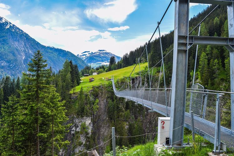 Monkey Bridge Nature Nature_collection Bridge Tree Green Grass Mountains Alps Clouds And Sky Summer Outdoors Austria