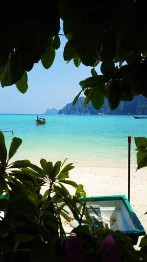 Sea Seaside Thailand Thailand Ocean Photography Travel Travelling Phi Phi View Island Vacation Boat Beach Eyemphotography Outdoors Lifestyles Nature Summer Sand Eyem Beauty In Nature Essence Of Summer The Great Outdoors - 2016 EyeEm Awards The Great Outdoors With Adobe