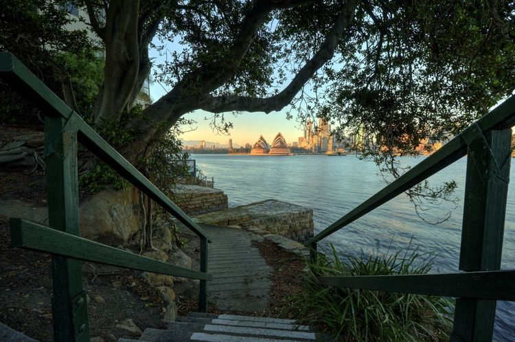 Sydney Opera House Architecture Water Sky Nature No People Sydney Sydney Opera House Tree Plant Outdoors Wood - Material Staircase Beauty In Nature Tranquility Travel Destinations Tourist Attraction  Tourism Scenics - Nature Sydney, Australia