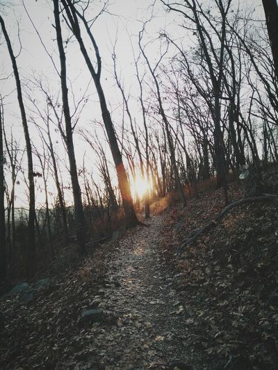 Chasing trails First Eyeem Photo Hiking Showcase: December
