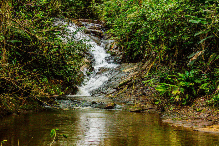 Ecoturismo Meleiro, Brazil Beauty In Nature Day Ecoturism Forest Grass Long Exposure Motion Nature No People Outdoors River Scenics Tranquil Scene Tree Water Waterfall