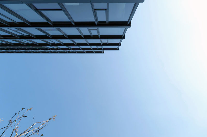 Development Directly Below Tall - High Building Modern Branch Tree Plant Building Exterior Copy Space Outdoors Blue Nature Day No People Clear Sky Architecture Built Structure Low Angle View Sky My Best Photo