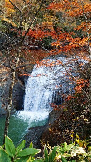 恵庭市 Nature 恵庭渓谷 北海道 Autumn Autumn🍁🍁🍁 紅葉