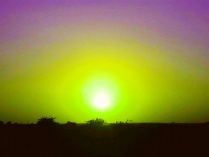 sunset colors Tree Multi Colored Illuminated Space Yellow Awe Natural Phenomenon Rainbow Dramatic Sky Sky Aurora Polaris Star Field Galaxy Nebula Foggy Milky Way Globular Star Cluster Infinity Spiral Galaxy Emission Nebula Astronomy Sky Only Constellation Starry Space And Astronomy First Eyeem Photo