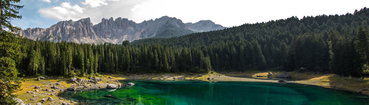 lago di carezza Carezza Lake Dolomites, Italy Beauty In Nature Coniferous Tree Day Environment Forest Lake Land Mountain Mountain Range Mountains Nature No People Non-urban Scene Pine Tree Pine Woodland Plant Scenics - Nature Sky Tranquil Scene Tranquility Tree Water WoodLand