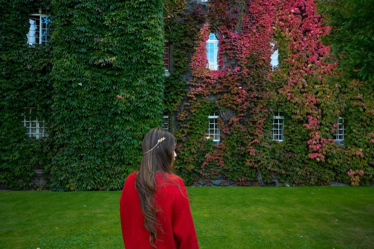 Autumn Autumn Colors Autumn Leaves Fall Colors Fall Leaves Green Red Windows Getting Away From It All Nature Tranquility Outdoors Long Hair Person Standing Ivy Leaves Ivy Wall Ivy