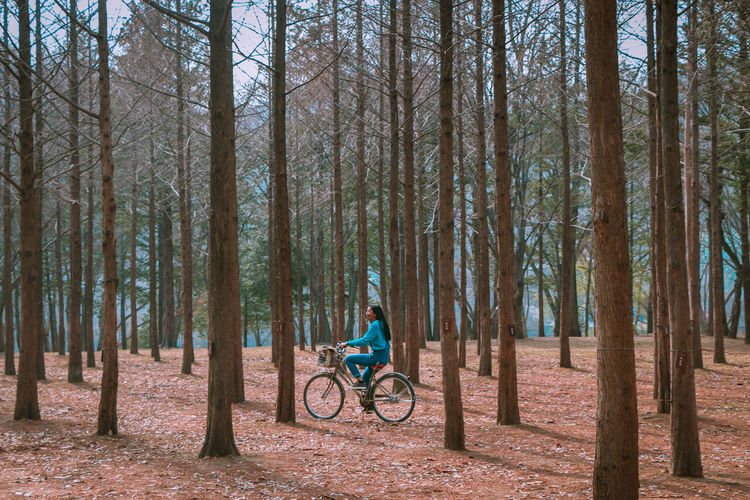 Side view of woman riding bicycle in forest