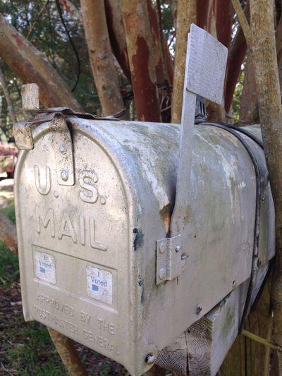 Mailbox Taking Photos