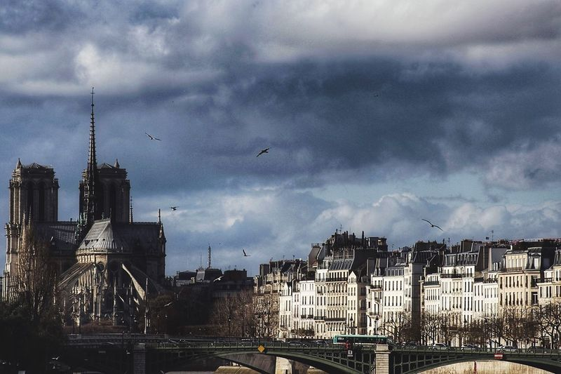 Enjoying Life Taking Photos Landscape Urban Paris France Europe Water Streetphotography Blue Sky HDR Sunset Clouds Birds Nature Saint-Michel Cathedral