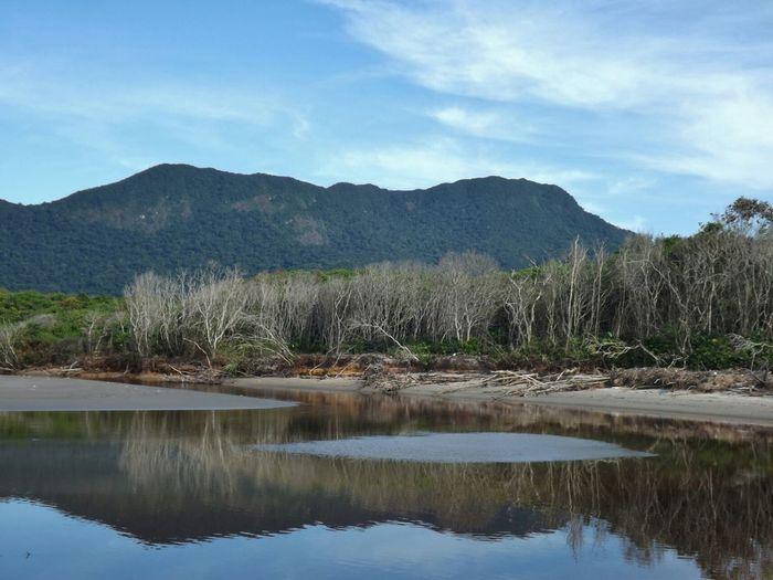 Water Reflections Eyem CeuAzul Nature Juréia-itatins Peruíbe SP Brasil