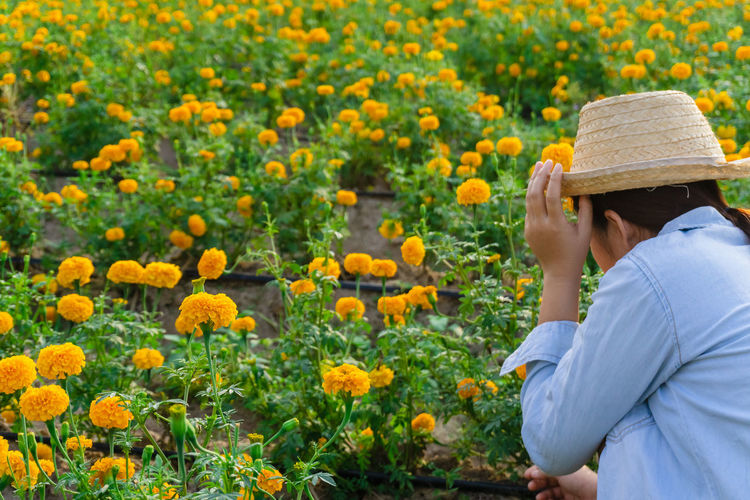 Marigold Portrait Flower Marigold Flower Farmer Selective Focus Lifestyles Outdoors Nature Plant Leisure Activity Care Check One Person Real People Growth Hat Flowering Plant Beauty In Nature Freshness Adult Field Yellow Side View Day Casual Clothing Standing Flower Head