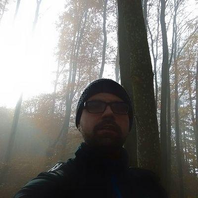 Speckwegpfad Zürich Planetenpfad Swissalps üetliberg Herbst Nebel Fog Tree Laub Fettwegpfad Sonnenspiel Fog Herbst Sunny Neblig Wald Planetenpfad Albis Swissalps Swizerland