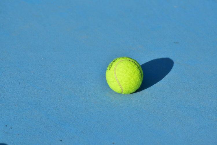 High angle view of yellow ball on leaf