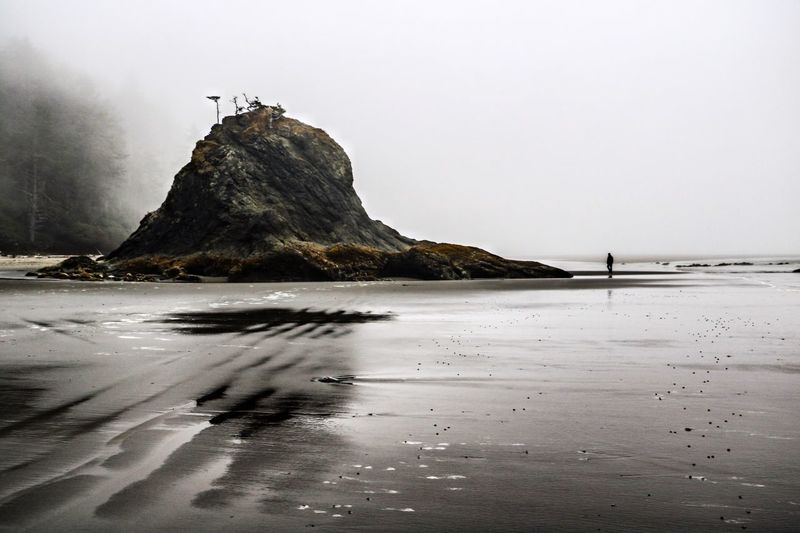Olympic National Park Water Sea Beauty In Nature Tranquil Scene Nature Beach No People Scenics - Nature Tranquility Rock Rock - Object Rock Formation Outdoors Land