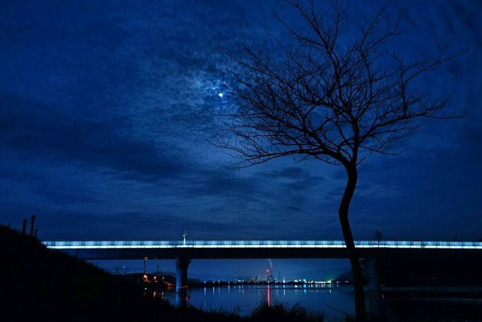 帰り道 ~Way home~ Night Night Lights Night Photography Moon Moonlight Blue Sky Love_blue River Riverside Hagging A Tree EyeEm Nature Lover Light And Shadow Darkness And Light Landscape EyeEm Best Shots From My Point Of View 同じ空の下 My Town Kagoshima また明日ね~🙋Good night🌙