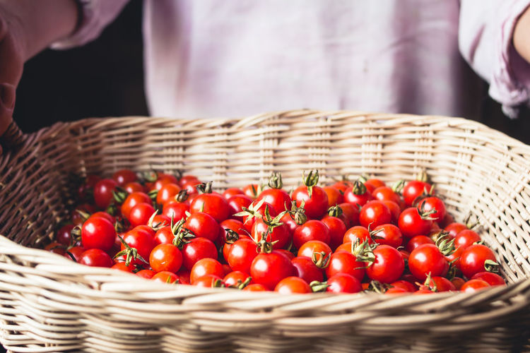 Tomato cherry in basket Tomato in hand South Asia Basket Close-up Container Day Focus On Foreground Food Food And Drink Freshness Fruit Hand Healthy Eating Holding Large Group Of Objects Midsection One Person Red Ripe Selective Focus Tomato Vegetable Wellbeing Wicker