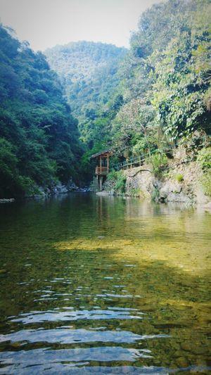 旅游 溪水