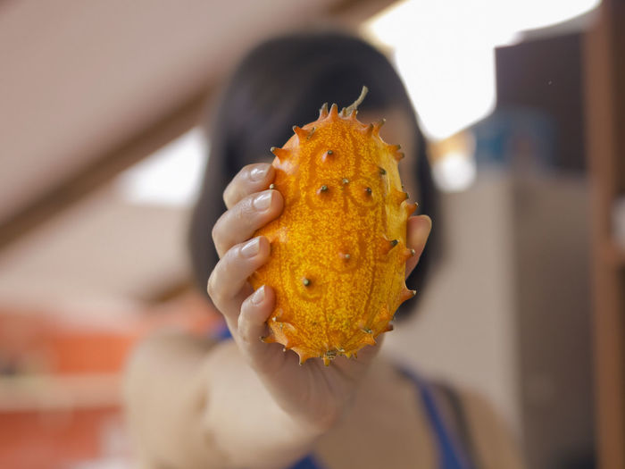 Kiwano Fruit African Cucumber African Horned Cucumber Blowfish Fruit Cucumis Metuliferus Exotic Exotic Fruit Focus On Foreground Food Fruit Hedged Gourd Horned Cucumber Horned Melon Jelly Melon Kiwano Melano Selective Focus Nature's Diversities