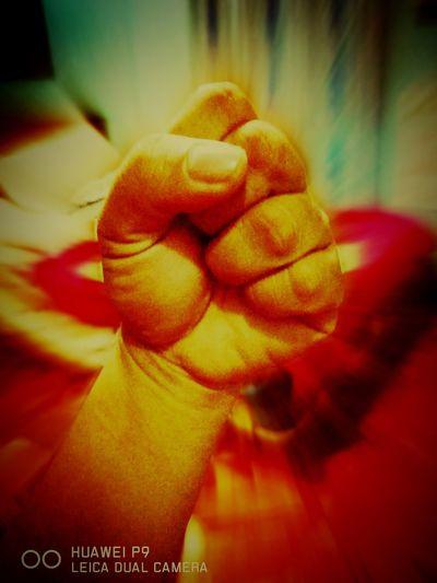Human Body Part Human Hand