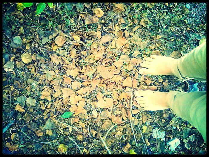 Feeling the Life and Death Barefoot EyeEm Nature Lover Enjoying Life Walking Around