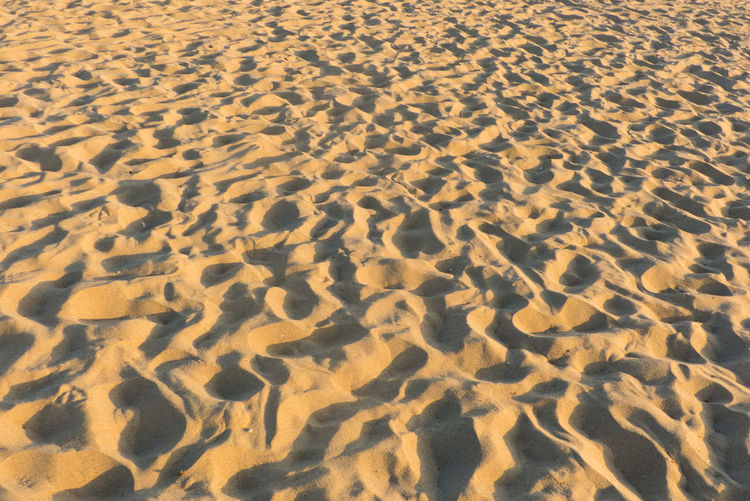 Sandy Beach Footprints Beach Busy Beach, California Footprints Hot Nature Ocean Outside Sand Sandy Sunny Day Vera Gavrilovic VivaGirlCo