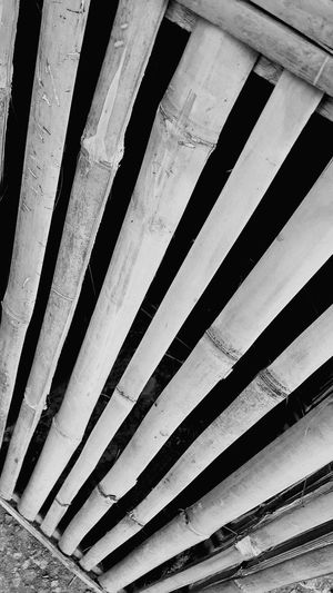 bamboo streak... Pattern No People The Architect - 2017 EyeEm Awards EyeEmNewHere Break The Mold The Street Photographer - 2017 EyeEm Awards The Great Outdoors - 2017 EyeEm Awards It's More Fun In The Philippines! Low Section Striations Black & White