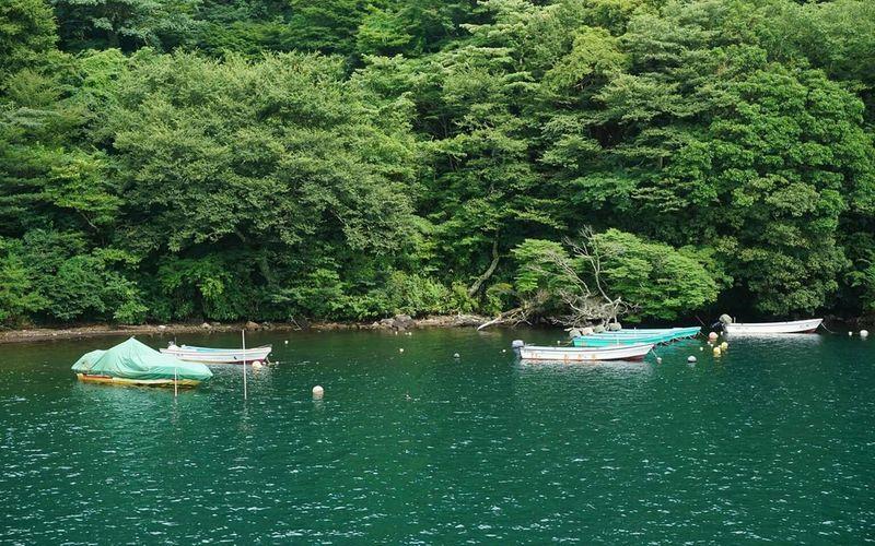 Lake Ashinoko Lake Nature Scenics Outdoors Water Adventure Happiness Freedom Japan The Great Outdoors - 2017 EyeEm Awards EyeEmNewHere EyeEm Best Shots