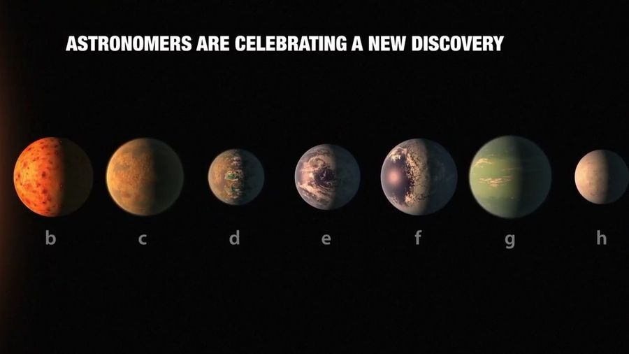 A Great Discovery Of 7 Majestic Exo Planets Hope In Future We Get The Evidence Of Life Out There !!!!!!!🗿🗿🌌🌌?Thank You NASA. ?In A Row Black Background Black Color Food And Drink Shiny No People Close-up Indoors  Space And Astronomy SpaceShip Spaceneedle Space For Copy Space Invaders Space And Universe Space For Text Space4BikeInfra Space Shuttle Space Needle SpaceEffect Space And Place Space And Time Planetshakers Planets Venus And Saturn Planets & Stars Planetshaker