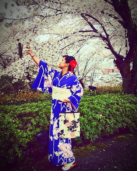 Kimono Sakura Spring Cherry Blossoms