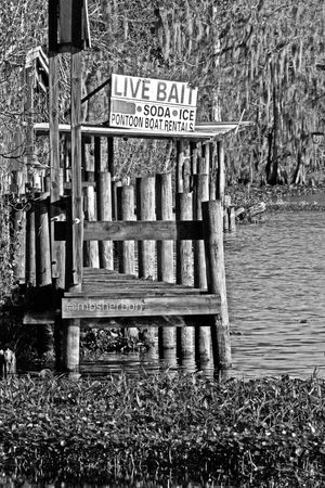 River Florida Water_collection Nature_collection Eye4photography  Docks Black And White EyeEm Nature Lover Fishing Backroads