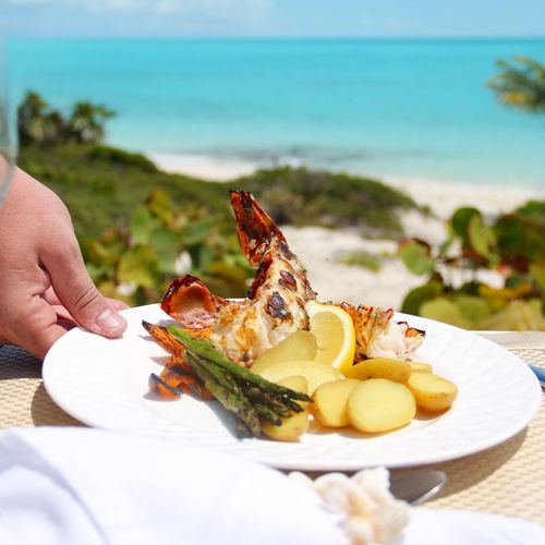Lobster is best served by the beach // Sea Horizon Over Water Beach Close-up Holding Water Person Food Food And Drink Sunlight Focus On Foreground Leisure Activity Nature Beauty In Nature Outdoors Freshness Personal Perspective Ready-to-eat