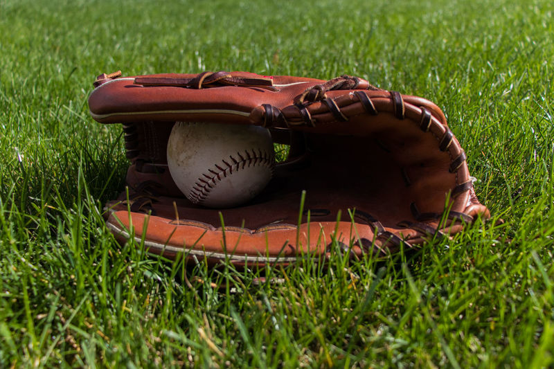 Ball in Glove Ball Baseball - Ball Baseball - Sport Baseball Glove Close-up Day Field Grass Green Color No People Outdoors Playing Field Sport Sports Equipment Still Life