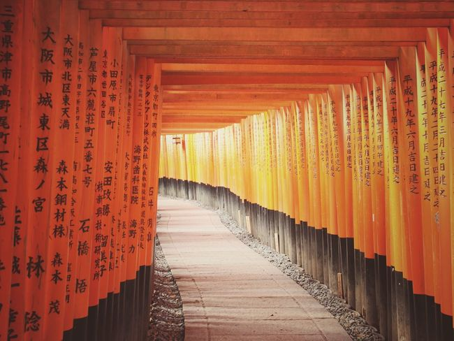 Fushimi Inari Taisha | Orange Color Cultures Beautifully Organized Travel Abstract Who What Where Enjoy The New Normal Japan Through My Eyes Sunlight Still Life Tranquility Kyoto Japan|