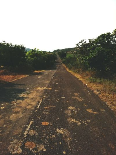Way to diu.... Diu  Waytohappiness <3 Gujarat Road Statehighway Journey MyLove❤ Beautifullview Novehicle EyeEm Nature Lover EyeEm Best Shots Popular Photos Morning Light An Eye For Travel