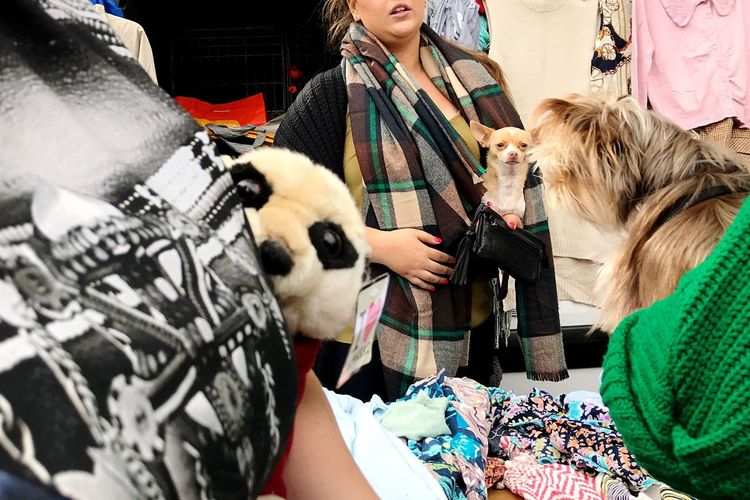 Battersea car boot sale Retail  Pets Store Business Finance And Industry Fashion Clothing Togetherness Day Market Adult Dog Only Women Mammal Women Consumerism Customer  Domestic Animals Adults Only People City Battersea Car Boot Sale Car Boot Sale London