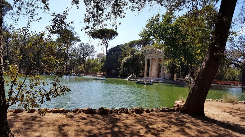 haven of peace in the city Borghese Villa Borghese Gardens Garden Giardino Rome Roma Tempio Di Esculapio Water Tree Nature Outdoors Sunlight Beauty In Nature Lake Lago Italy Italia Bella Italia Beauty Of Italy Small Boat Blue Green Water The Week On EyeEm Catherine2017 Moving Around Rome Stories From The City Summer Exploratorium Adventures In The City