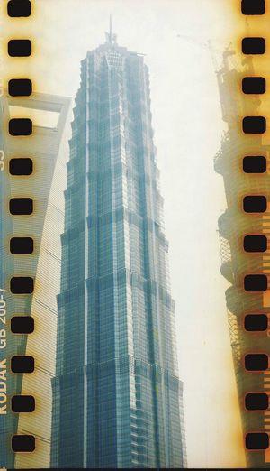 Film Photography Lubitel 166+ Lomography