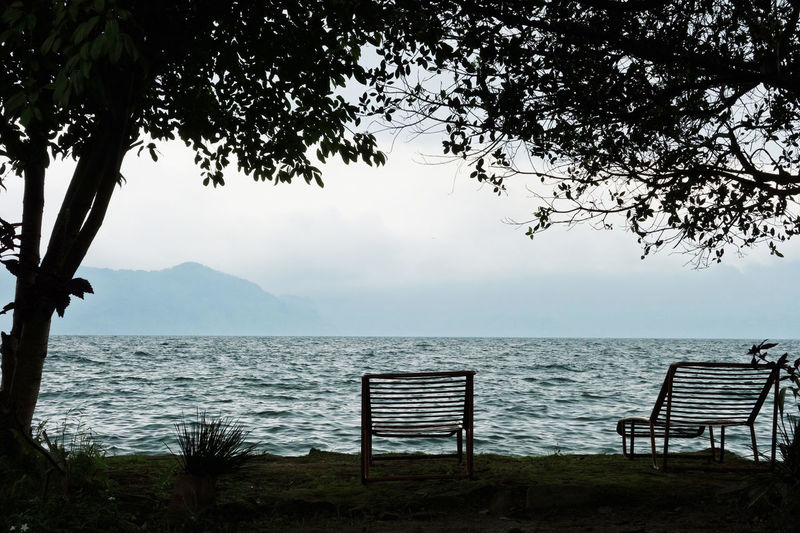 Sumatra  Toba Lake Beach Beauty In Nature Branch Clear Sky Day Horizon Over Water Nature No People Outdoors Sand Scenics Sea Sky Toga Lake Suma Tranquil Scene Tranquility Tree Tree Trunk Water
