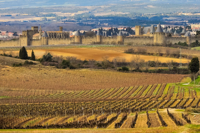 Vineyards around the ancient city of Carcassonne Agriculture Ancient Architecture Building Exterior Built Structure Business Finance And Industry Carcassonne City Cityscape Day Fields Fortress Growth Nature No People Old Old Town Outdoors Rural Scene Sky Lost In The Landscape Towers Travel Destinations Vineyards  Wine