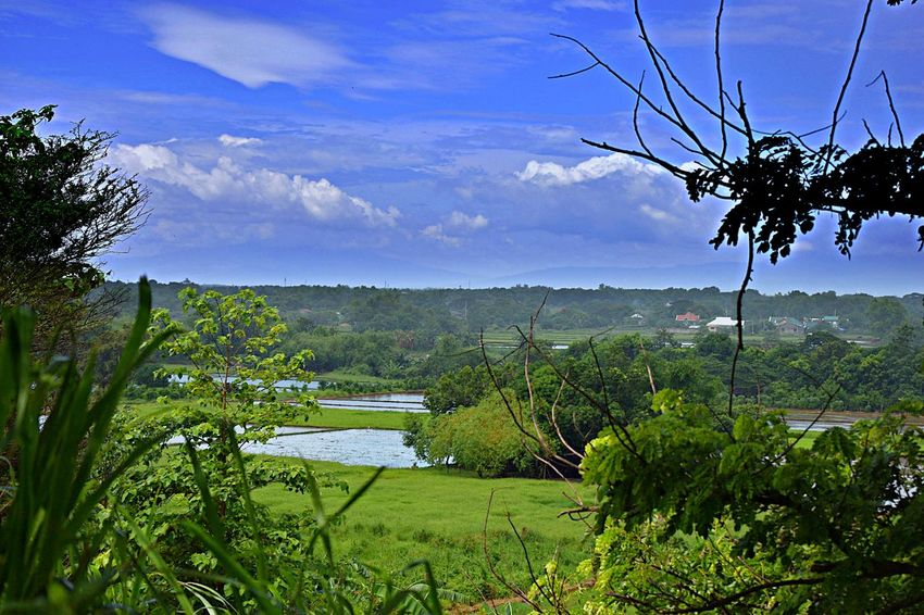 Eco Park Sta. Rita Pampanga Philippines Beauty In Nature Cloud - Sky Day Environment Field Green Color Growth Land Landscape Nature No People Non-urban Scene Outdoors Plant Rural Scene Scenics - Nature Sky Tranquil Scene Tranquility Tree
