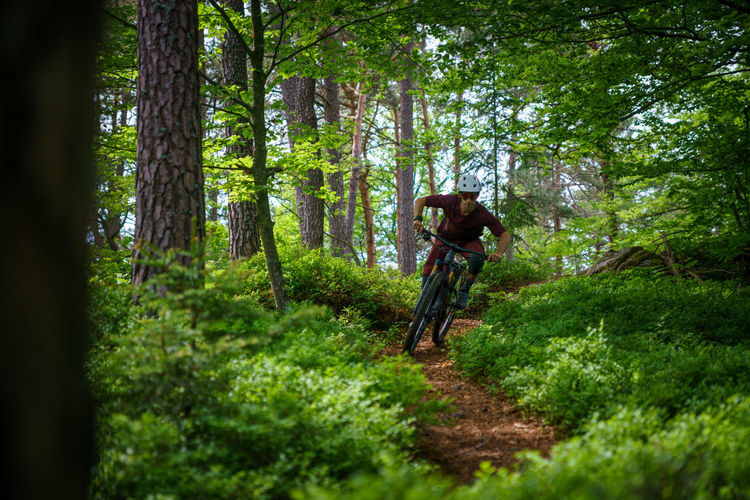 Man riding mountain bike on footpath amidst trees in forest, austria