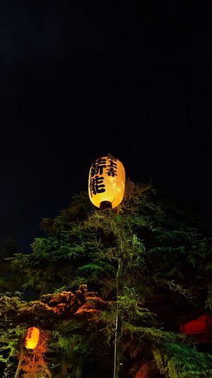 Night Illuminated Halloween Outdoors Communication Low Angle View Lantern No People Celebration Nature Tree Pumpkin Sky Noh Zoujouji