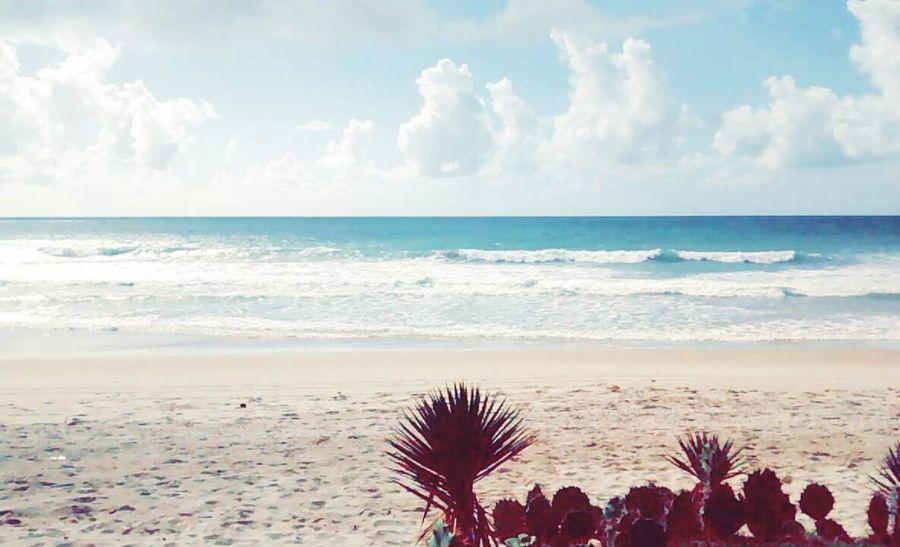 Relaxing Popular Photos Brazil Paisagem Beach Natureza Porto De Galinhas 🌞🌞☁☁⛅⛅