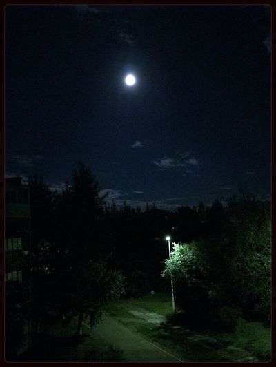 Какая большая сегодня луна TooDay Moon Full Moon Nigh
